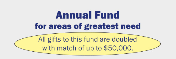Annual Fund Button.jpg